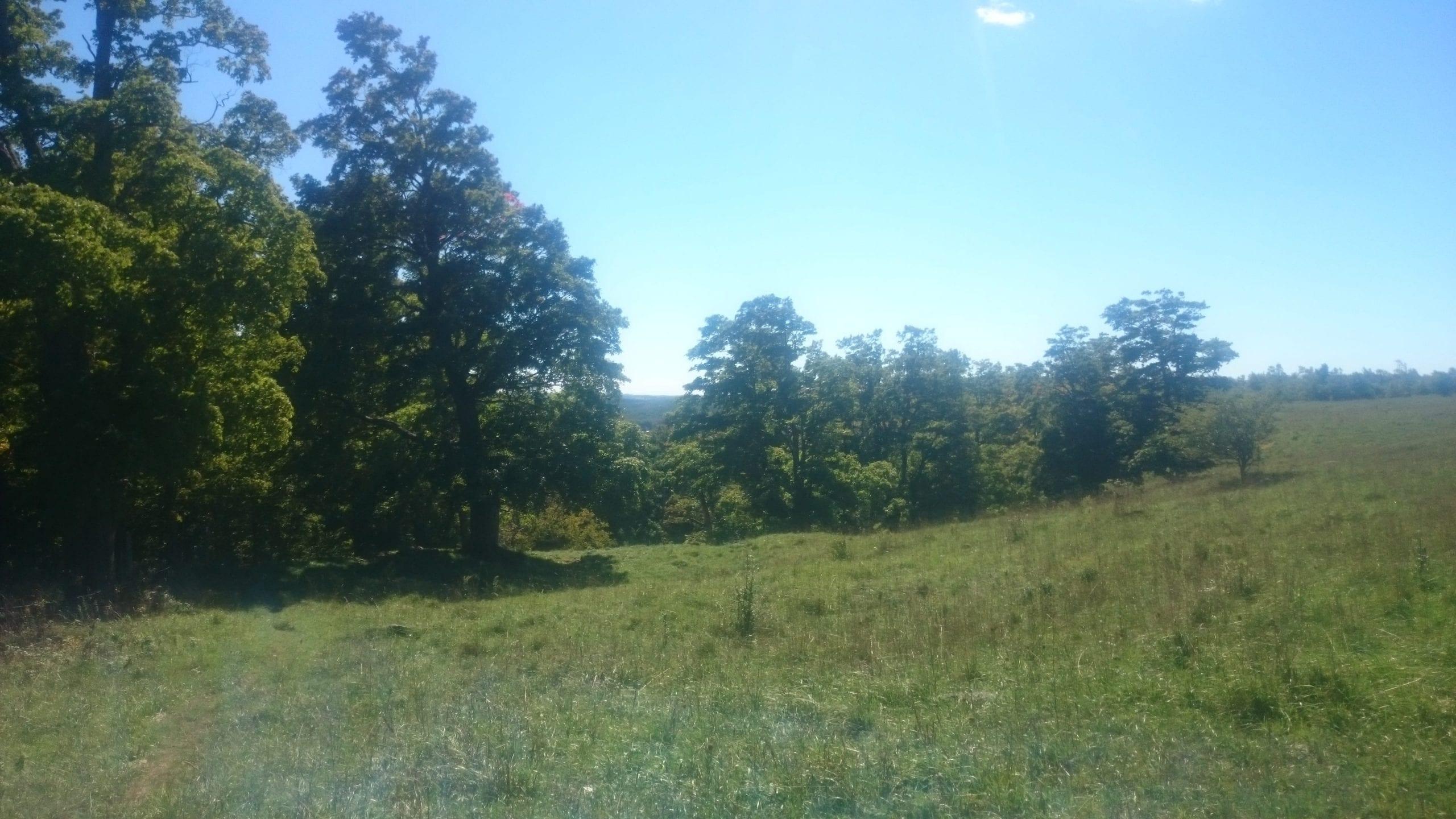 September 20 2016 Bruce Trail Hiking
